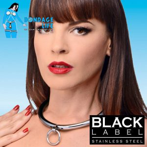 Combination Lock Slave Collar